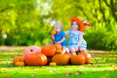 Kids at Halloween pumpkin patch Stock Photography
