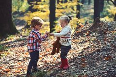Kids harvest grass in autumn forest. Brother and sister play on fresh air. Small boy and girl friends have fun in woods. Childhood and child friendship stock photo