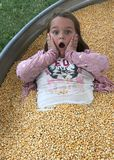 Fun In The Corn. Kids always have a great time around Halloween. One of the favorite places is the Pumpkin Patch. Families enjoy many activities such as hey royalty free stock photography