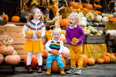 Kids having fun at pumpkin patch. Group of little children enjoying harvest festival celebration at pumpkin patch. Kids picking and carving pumpkins at country stock photo