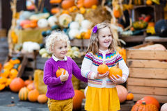Kids having fun at pumpkin patch Stock Image