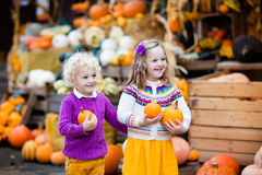 Kids having fun at pumpkin patch. Group of little children enjoying harvest festival celebration at pumpkin patch. Kids picking and carving pumpkins at country Stock Photography