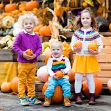 Kids having fun at pumpkin patch. Group of little children enjoying harvest festival celebration at pumpkin patch. Kids picking and carving pumpkins at country Royalty Free Stock Photo