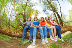 Kids having fun sitting on trunk of fallen tree Royalty Free Stock Photos