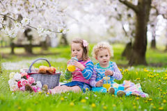 Kids having picnic in blooming garden. Little children eating lunch outdoors. Kids with picnic basket in spring garden with blooming apple and cherry tree Stock Photo