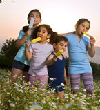 Kids having pop ice. Four kids having pop ice in a summer sunset Stock Images