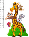Kids height scale with funny animals Stock Photos