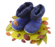 Kids high boots on leaves Stock Photography