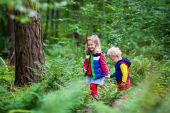 Kids hiking in autumn park Royalty Free Stock Photos