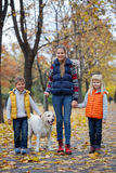 Kids with his dog labrador Stock Image