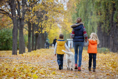 Kids with his dog labrador Stock Images