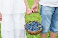 Kids holding basket with blueberries Royalty Free Stock Photos