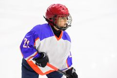 Kids ice hockey. Sport for Kids. Young ice hockey player royalty free stock photo