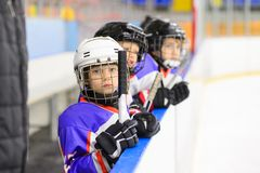 Kids ice hockey. Sport for Kids. Young ice hockey players royalty free stock photo