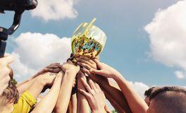 Free Kids In Sports Team Lift Up The Golden Cup Trophy After Winning The Final Tournament Match Royalty Free Stock Image - 168457136