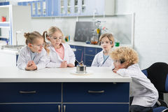 Kids in lab coats and protective glases making experiment. In laboratory stock photo