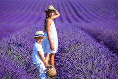 Kids in lavender summer field Royalty Free Stock Photos
