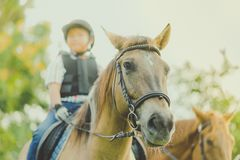 Kids learn to ride a horse near the river stock photography
