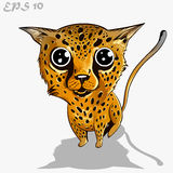Kids leopard Royalty Free Stock Photography