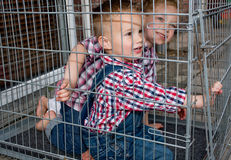 Kids are locked up Stock Image