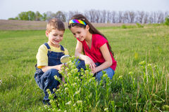 Kids looking to flower through a magnifying glass Stock Photos