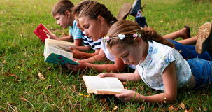 Kids lying on grass and reading books stock video