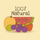 Kids nutrition. Design, vector illustration eps10 graphic Royalty Free Stock Photography