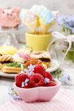 Kids party: bowl of fresh raspberries Royalty Free Stock Photography