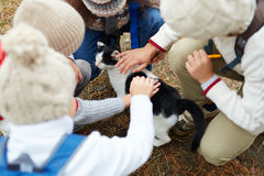 Kids Petting Cat Outdoors. High angle shot of children petting cat outdoors on the way to school Royalty Free Stock Photos