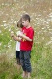 Kids picking flowers Royalty Free Stock Photos