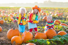 Kids picking pumpkins on Halloween pumpkin patch Royalty Free Stock Photography