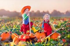 Kids picking pumpkins on Halloween pumpkin patch Stock Images