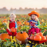 Kids picking pumpkins on Halloween pumpkin patch Royalty Free Stock Image