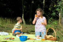 Kids while picnic. In summer Royalty Free Stock Images