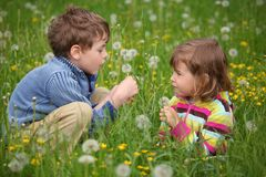 Kids plaing at meadow and blow dandelion Royalty Free Stock Photos