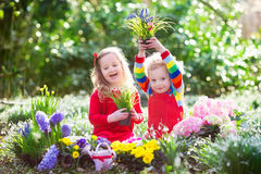 Kids planting flowers in blooming garden royalty free stock image