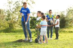 Kids planting trees with volunteers royalty free stock photos