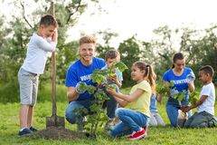 Kids planting trees with volunteers. In park royalty free stock photo