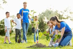Kids planting trees with volunteers. In park royalty free stock photos