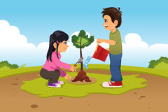 Kids Planting and Watering a Tree Stock Images