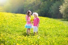 Kids play. Child in dandelion field. Summer flower Royalty Free Stock Image