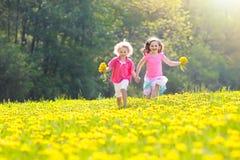 Kids play. Child in dandelion field. Summer flower Stock Photo