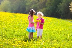 Kids play. Child in dandelion field. Summer flower royalty free stock photos