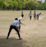 Kids play cricket Stock Images