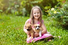 Kids play with puppy. Children and dog in garden stock photography