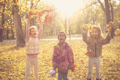 Kids Play with fallen leaves. Three little girls playing with fallen leaves stock photo