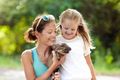 Kids and farm animals. Child with baby pig at zoo. Kids play with farm animals. Child feeding domestic animal. Young mother and little girl holding wild boar royalty free stock photos