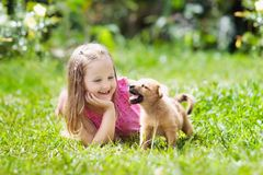 Kids play with puppy. Children and dog in garden. Kids play with cute little puppy. Children and baby dogs playing in sunny summer garden. Little girl holding Stock Image