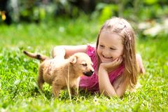 Kids play with puppy. Children and dog in garden royalty free stock photos