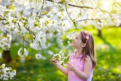 Kids play in spring park. Little girl with flowers. Kids play in spring park. Little girl in sunny garden with blooming cherry and apple trees. Child playing stock photos
